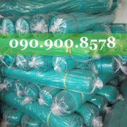IMG_0119-500x500