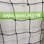 IMG_1048-2-500x500