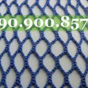 luoi-xanh-500x333